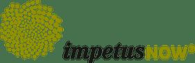 impetusNOW, Partner von MindLINK
